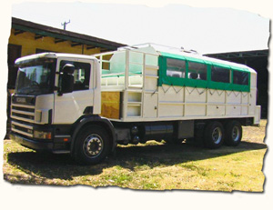 transport for your African safari